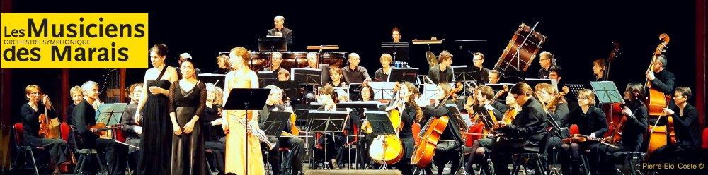 orchestre les musiciens du marais
